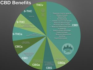 Uses for Cannabis