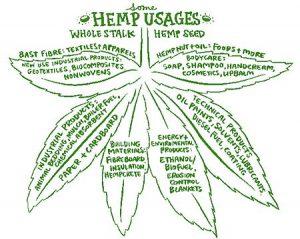 Hemp uses